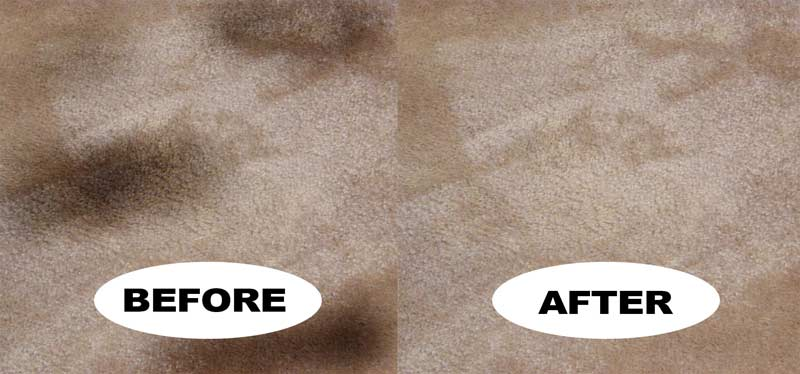 Carpet Cleaning Steamway And Upholstery